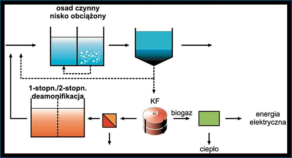 Rys. 2. Sposoby wykorzystania procesu deamonifikacji w ciągu bocznym (a) i głównym (b-c) [Gao et al. 2014]