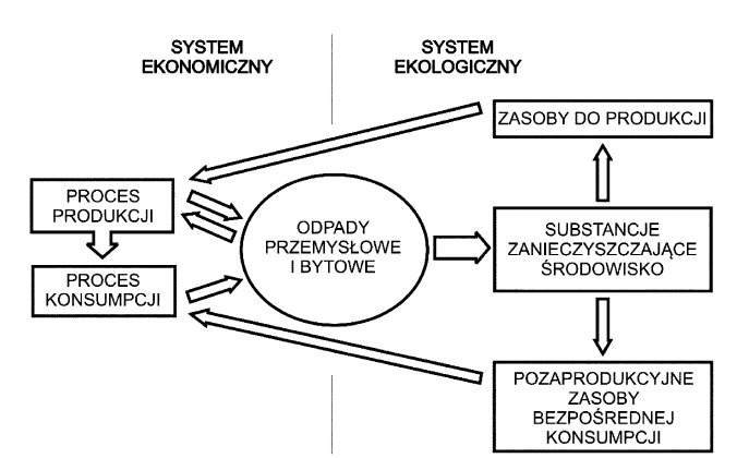 Rys. 1. Związki pomiędzy systemem ekonomicznym a ekologicznym na podstawie [2]