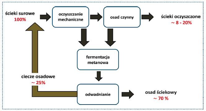 Rys. 2. Bilans mikroplastiku w oczyszczalni ścieków wg badań własnych