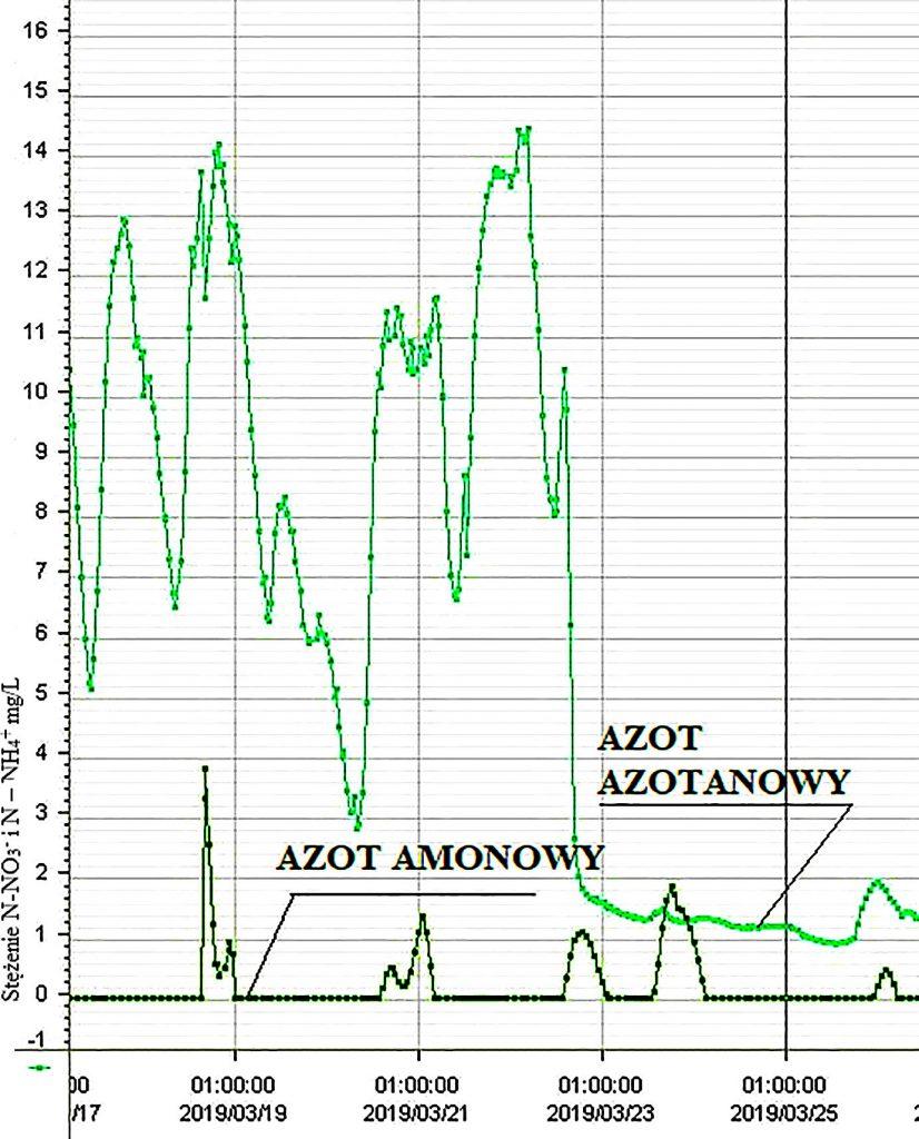 Rys. 2 Przebieg zmian stężenia azotu amonowego i azotanowego na wylocie komory KN2 reaktora biologicznego nr 2 uzyskany na podstawie zapisu on line za pomocą sondy jonoselektywnej ISE Max Endress Hauser po wprowadzeniu denitryfikacji końcowej w komorze nitryfikacji KN2