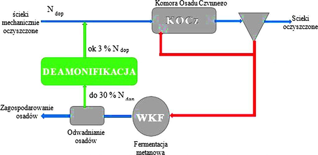 Rys. 6. Proces deamonifikacji w układzie technologicznym oczyszczalni ścieków