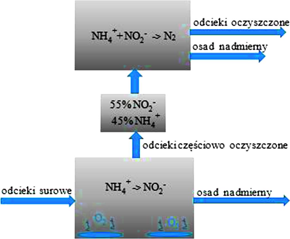 Rys. 8. Schemat 2-stopniowej deamonifikacji