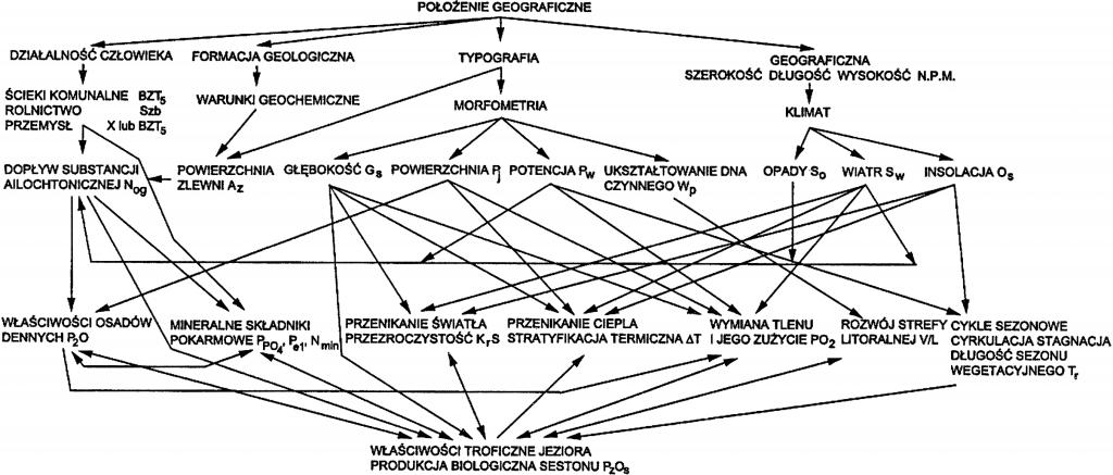 Rys. 1. Przyczynowo-skutkowe zależności mechanizacji eutrofizacji wód jeziornych wg schematu Reusona [1966] z dodatkowymi oznaczeniami zmiennych niezależnych i zależnych (np. P2O5 – procentowa zawartość substancji organicznych w suchej masie sestonu) ustanowionych przez Borsuka [2014] do modeli regresji zbudowanych dla trzech jezior (Charzykowskiego, Żurskiego, Wolickiego) [źródło: Borsuk 2014]