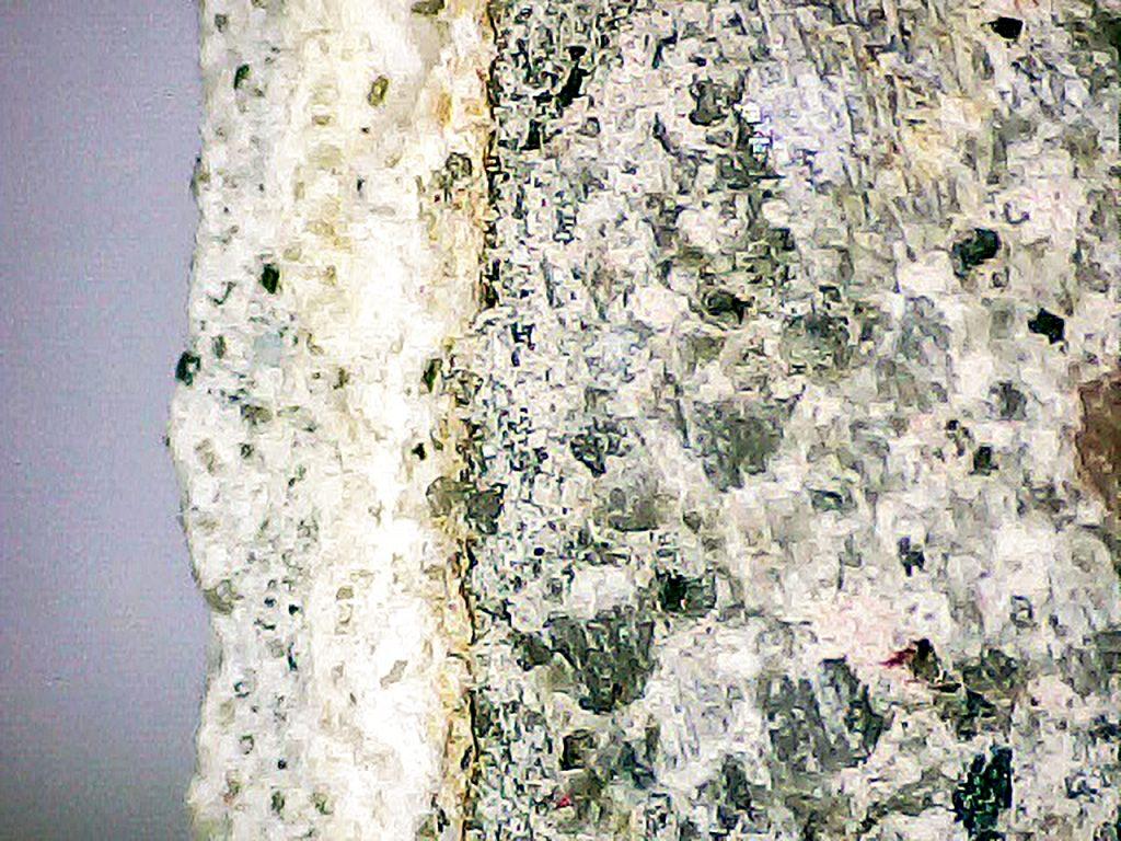 Rys. 2 a Obraz mikroskopowy nieuszkodzonych warstw naprawczych (powiększenie x 20)