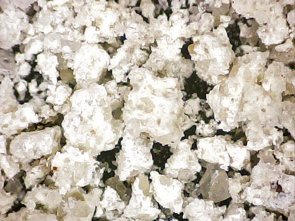 Rys. 6 a Obraz mikroskopowy wykwitów korozyjnych pobranych z powierzchni betonu (powiększenie x 20)