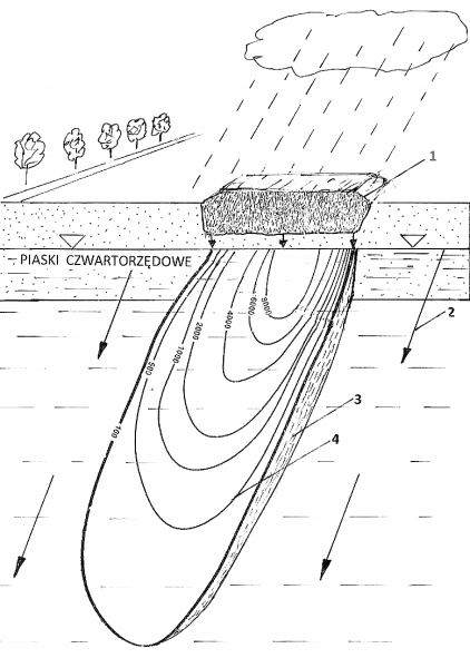 Rys. 2.Rozkład stężenia jednego ze składników [mg/l] w smudze zanieczyszczeń emitowanej przez składowisko chemikaliów. 1 – składowisko chemikaliów; 2 – kierunek ruchu wody podziemnej; 3 – smuga zanieczyszczeń wody podziemnej; 4 – izolinia stężenia badanego składnika