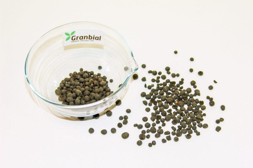 Fot. 1 Granulki nawozu Granbial